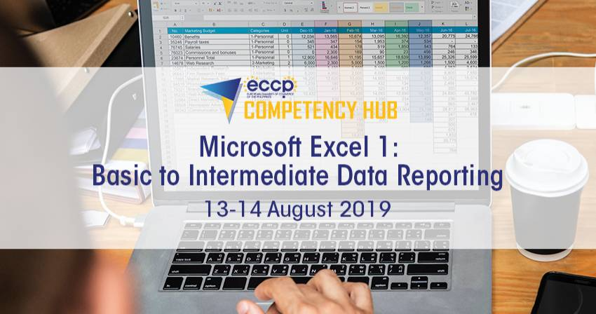 Microsoft Excel 1: Basic to Intermediate Data Reporting