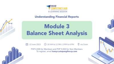 Balance Sheet Analysis Module