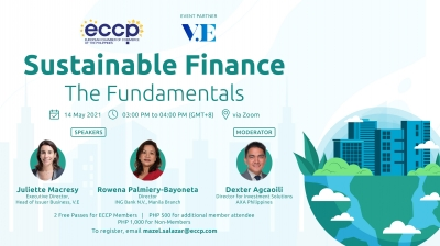 Sustainable Finance - The Fundamentals