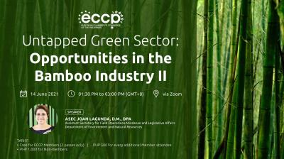 Untapped Green Sector: Opportunities in the Bamboo Industry II