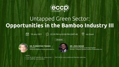 Untapped Green Sector: Opportunities in the Bamboo Industry III