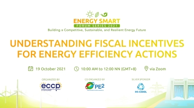 Understanding Fiscal Incentives for Energy Efficiency Actions